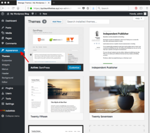 wordpress-configure-themes.png
